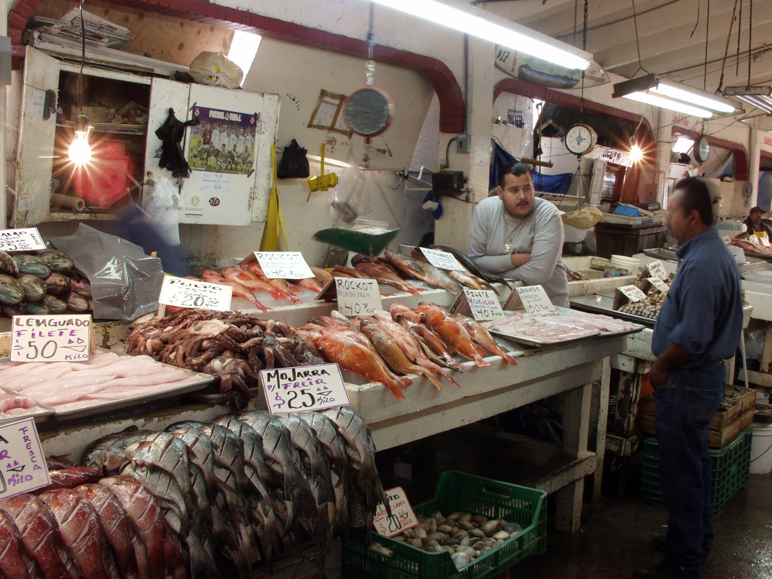 A fourth of all fish sold at markets have man made debris for Half moon bay fish market