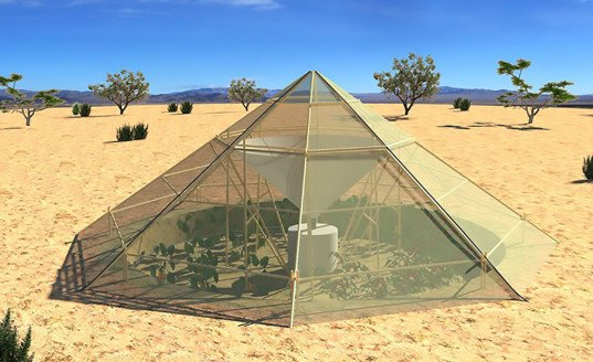 Groasis Waterboxx, desertification, desert, deserts, deforestation, roots up, dew collector greenhouse, Bio pyramid, Magnus Larsson, sandstone wall desertification, tumbleweed robot, Shlomi Mir, Stephane Malka, Green Machine, Sahara Desert