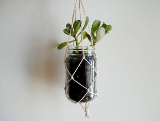 plant, garden, DIY, how-to, hanging, garden, planter, indoor, decor, interior, green, botany