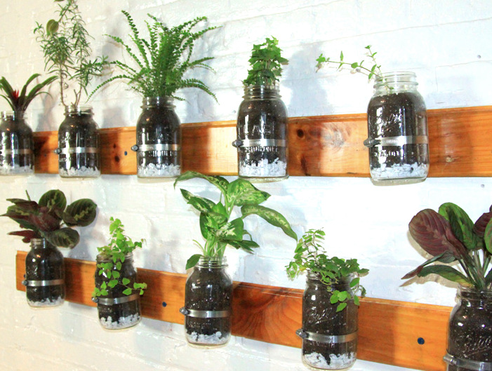 Plant Garden Diy How To Hanging Planter