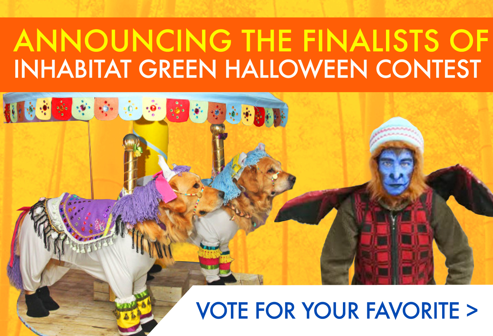 LAST CHANCE Vote For Your Favorite Green Halloween Costume Contest Finalist