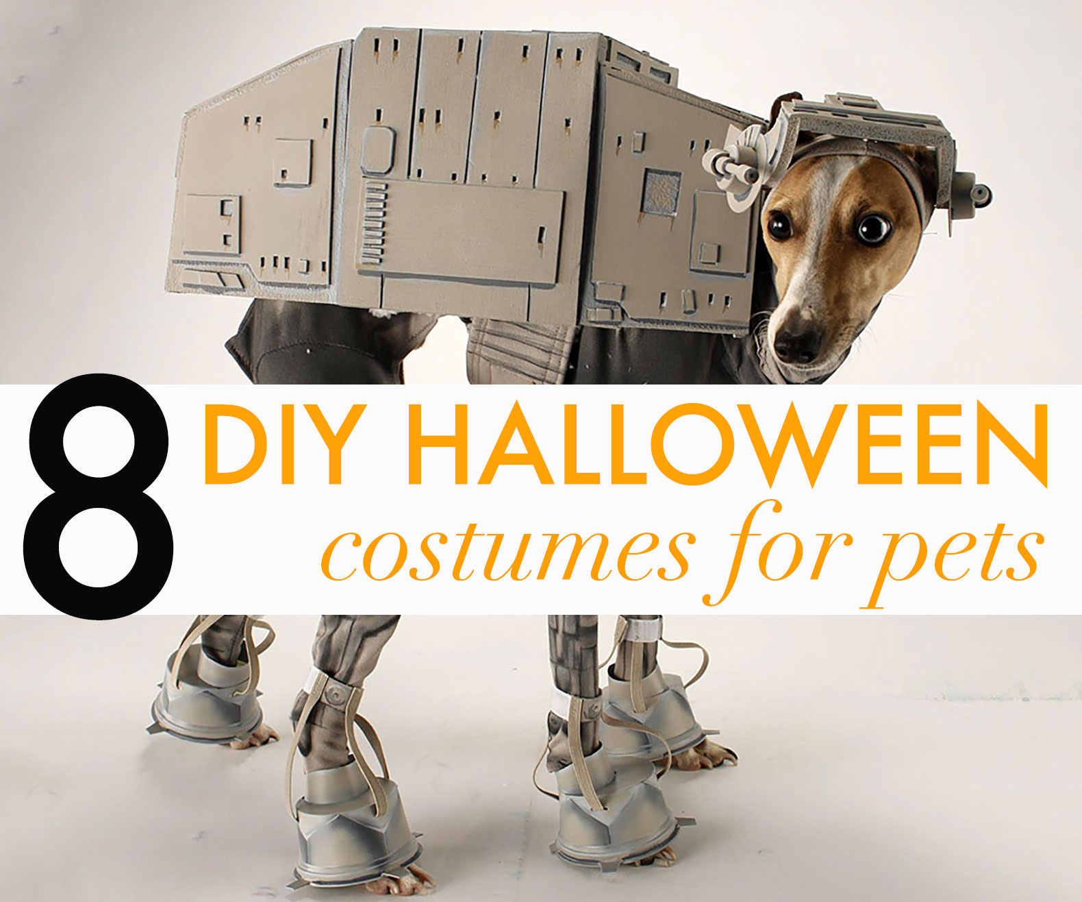 10 adorable diy halloween costumes for pets zero the dog costume