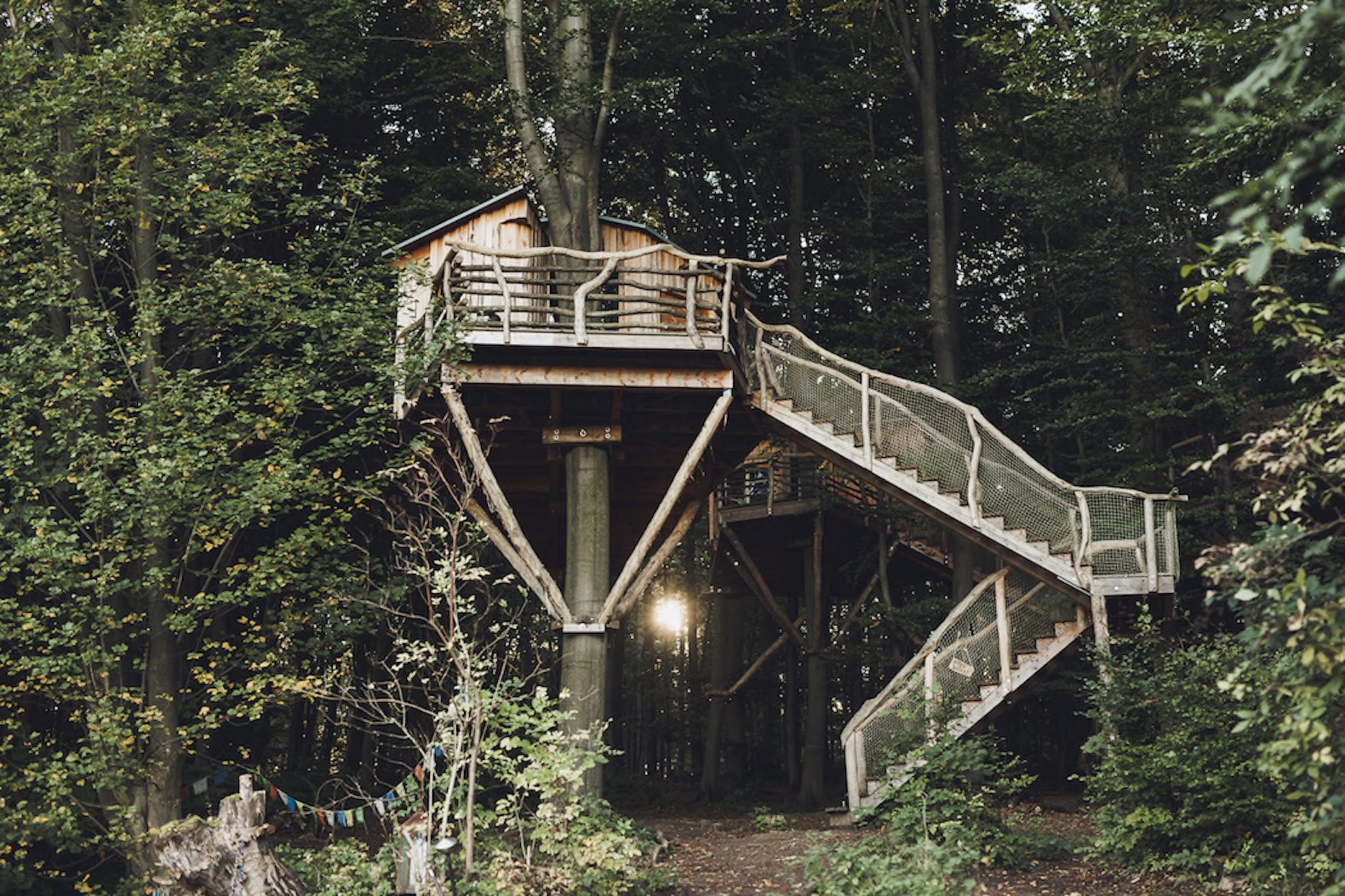 Gorgeous robin s nest treehouse hotel immerses you in Tiny house hotel near me