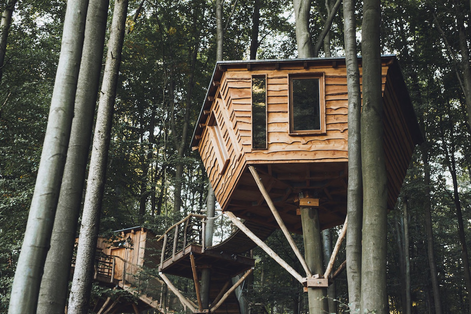 Gorgeous Robin S Nest Treehouse Hotel Immerses You In
