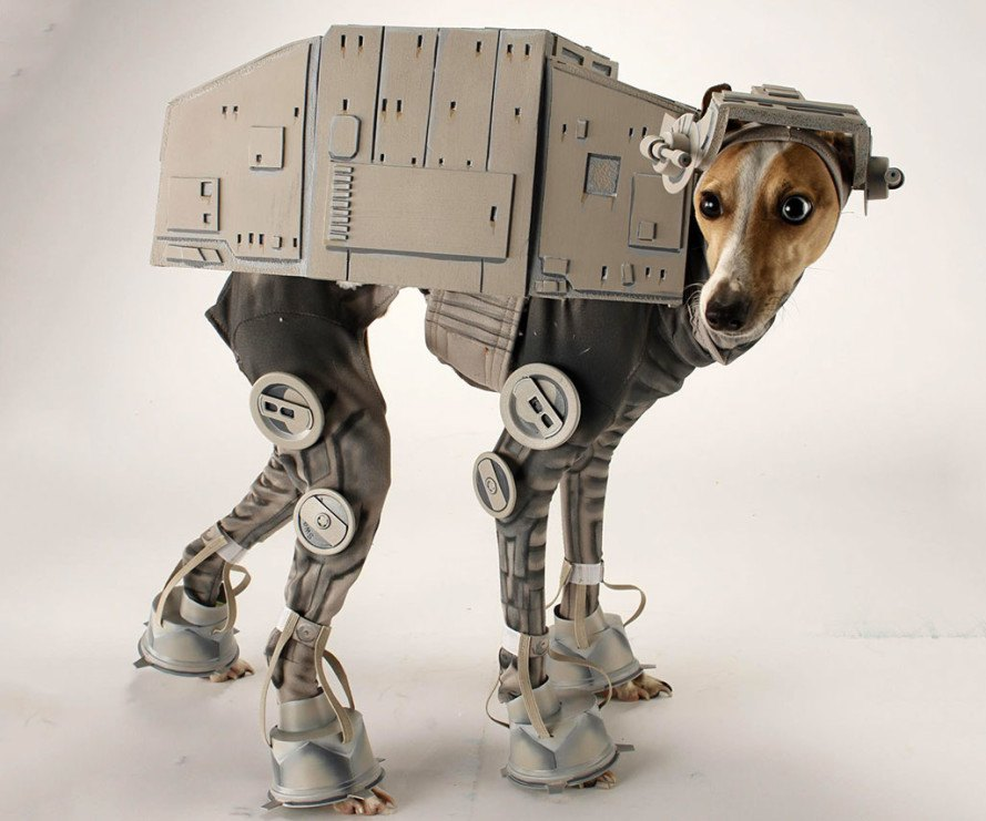 halloween, halloween costumes, halloween pet costumes, pet costumes, dress up pet halloween, turkey pet costume, superhero dog costume, halloween dog costumes, chia pet costume, doggie bag costume, skydiver dog costume, stars wars at at dog costume, zero the dog costume