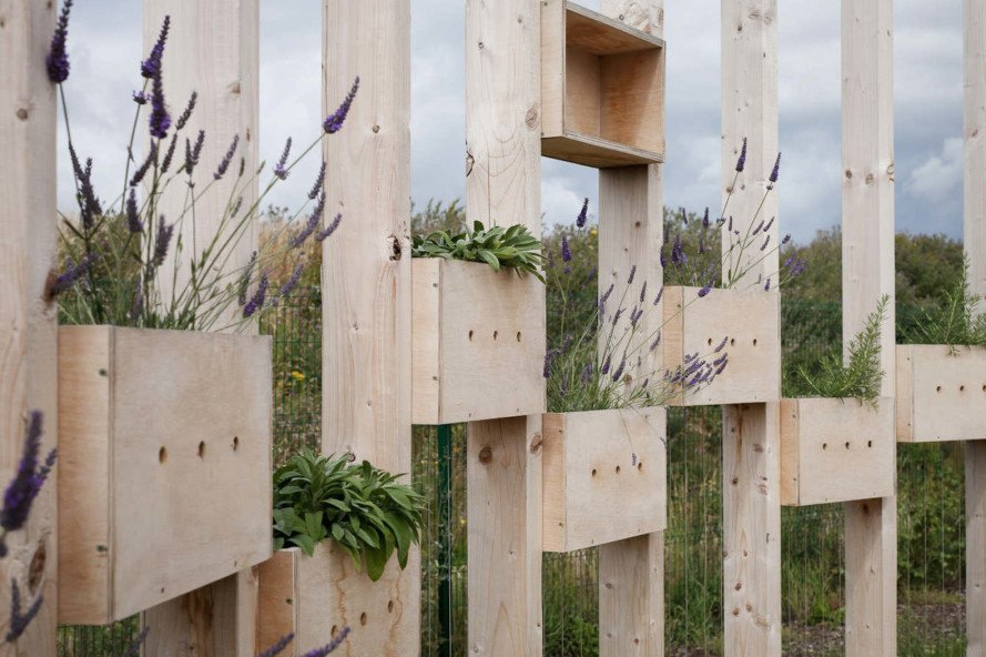 Hedge School, Hedge School by AP+E, AP+E, plywood, amphitheater, outdoor classroom, outdoor living classroom, pavilion, plywood pavilion, gardening, planting beds, unprogrammed space,