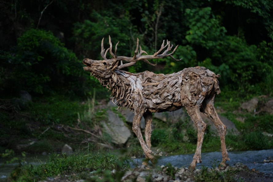 james doran-webb, driftwood, driftwood art, driftwood sculpture, animal sculpture, philippines art, sculptures, wooden sculptures, found materials, recycled materials