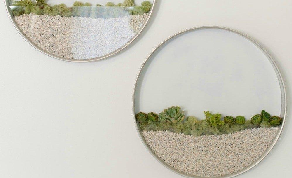 Create The Perfect Minimalist Garden With These Circular Wall Planters Kim  Fisher Circular Planters U2013 Inhabitat   Green Design, Innovation,  Architecture, ...