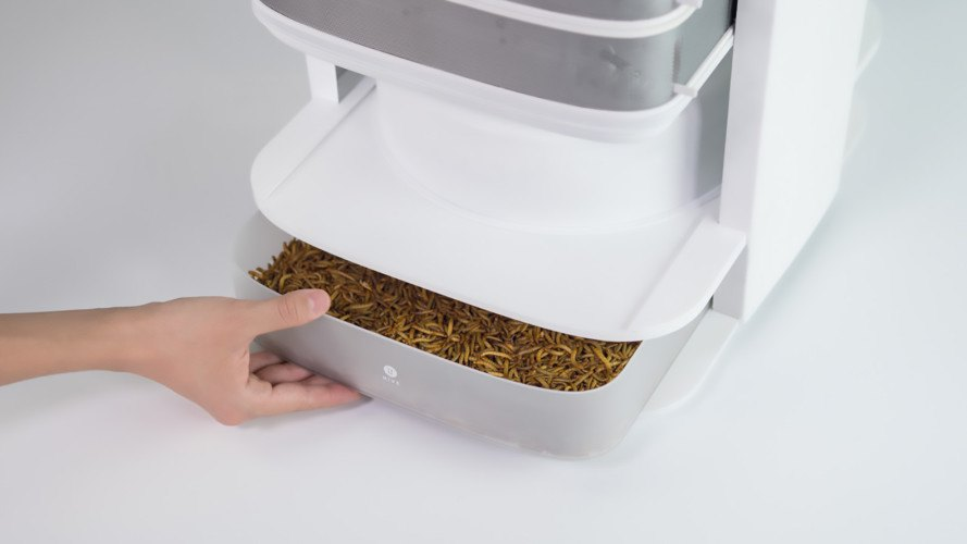 LIVIN Farms, desktop hive for edible insects, mealworms, sustainable meat, factory farming, edible insects, edible mealworms, eating bugs, Kickstarter,