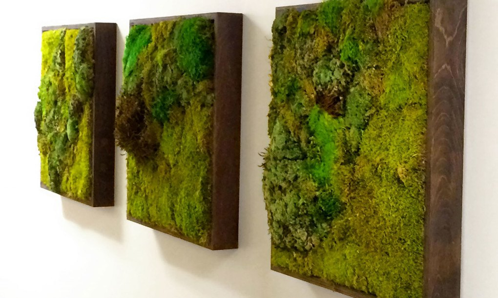 moss walls the newest trend in biophilic interiors inhabitat green design innovation. Black Bedroom Furniture Sets. Home Design Ideas