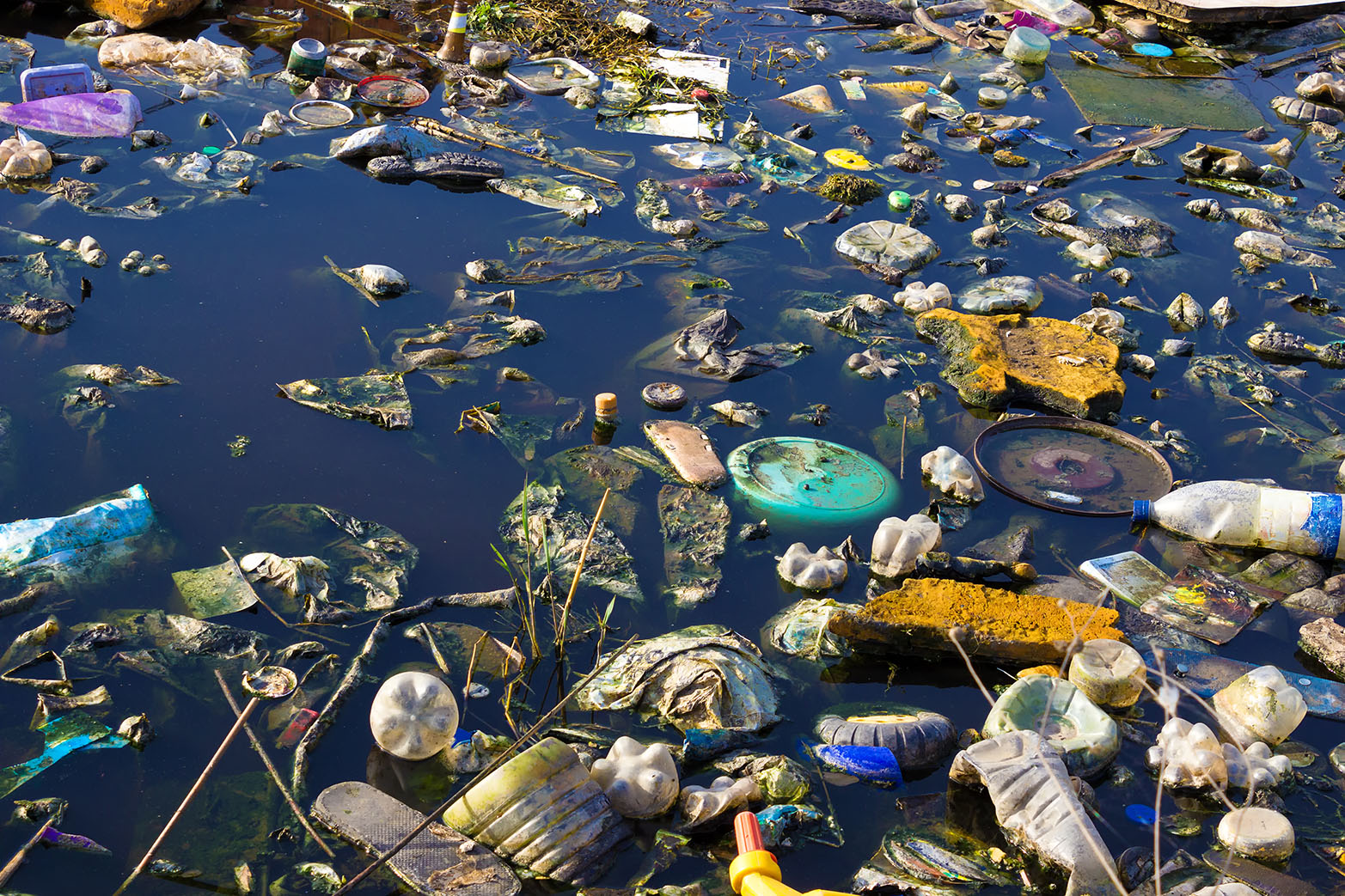 world water pollution Stockholm world water week seminar on opportunities and limits to water  pollution regulations sunday 27 august, 11:00-17:30 in room fh 300  managing.