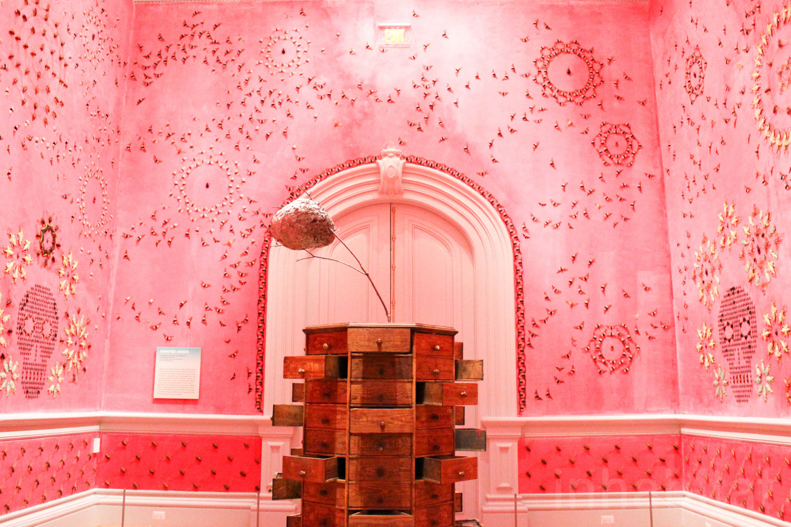 This room is adorned with 5,000 insects arranged in