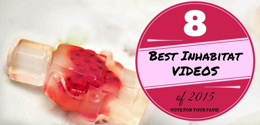 best diy videos, best inhabitat videos of 2015, duvet cover tricks, diy fruit roll-ups, how to make fruit roll ups, healthy fruit roll up recipe, how to install solar panels on your car, diy car solar panels, how to forage in a city park, how to forage, Korean sheep cafe, how to make edible LEGO jello shot minifigs, diy LEGO jello shots, how to make chia pudding, diy coconut chia pudding