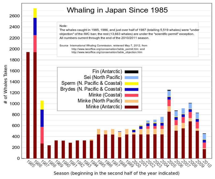 japan, japanese whale hunt, whale hunting, whales research, international court of justice, united nations, australia, whaling expedition, whaling in japan
