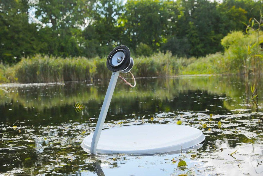Marco Barotti, recycled satellite dishes, swans, floatng installation, swan lake, musical art installation,