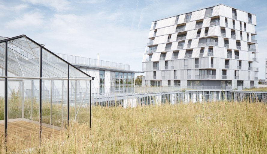 Chartier Dalix Architectes, Rosalind Franklin School Complex, Rosalind Franklin School Complex by Chartier Dalix Architectes, Ivry-sur-Seine, green roof, green roofed school, green terraces, biodiversity, teaching garden