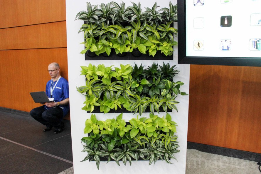 Greenbuild, Greenbuild 2015, living wall, green wall, modular green wall, modular living wall, Suite Plants, LiveFence, LivePortrait, Suite Plants LivePanel, LivePanel green wall, Greenbuild green wall, no electricity green wall, no plumbing green wall, capillary action green wall, vertical garden, modular plant cassette