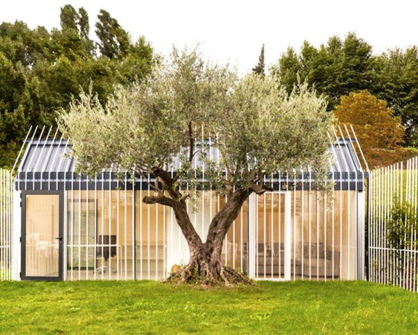 guest house, Spain, small house, tiny homes, green architecture, Taller Basico de Arquitectura, Spanish architects, garden, natural light