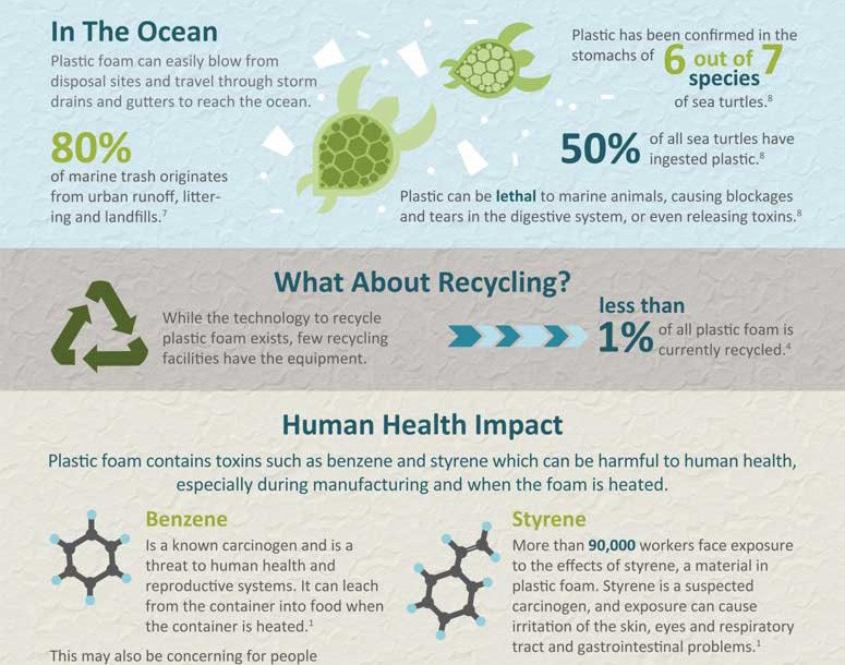 Infographic The Dangerous Truth About Styrofoam