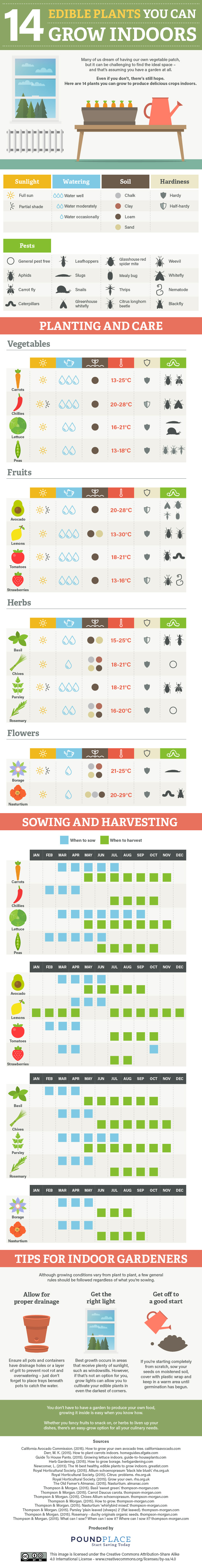 indoor plants, indoor edible plants, growing plants indoors, growing inside, growing plants inside, winter gardening, winter indoor gardening, indoor plants, indoor food garden, food gardening, infographic, reader submission