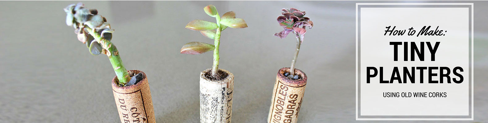 Diy projects inhabitat green design innovation architecture how to recycle old wine corks into cute mini planters solutioingenieria Images