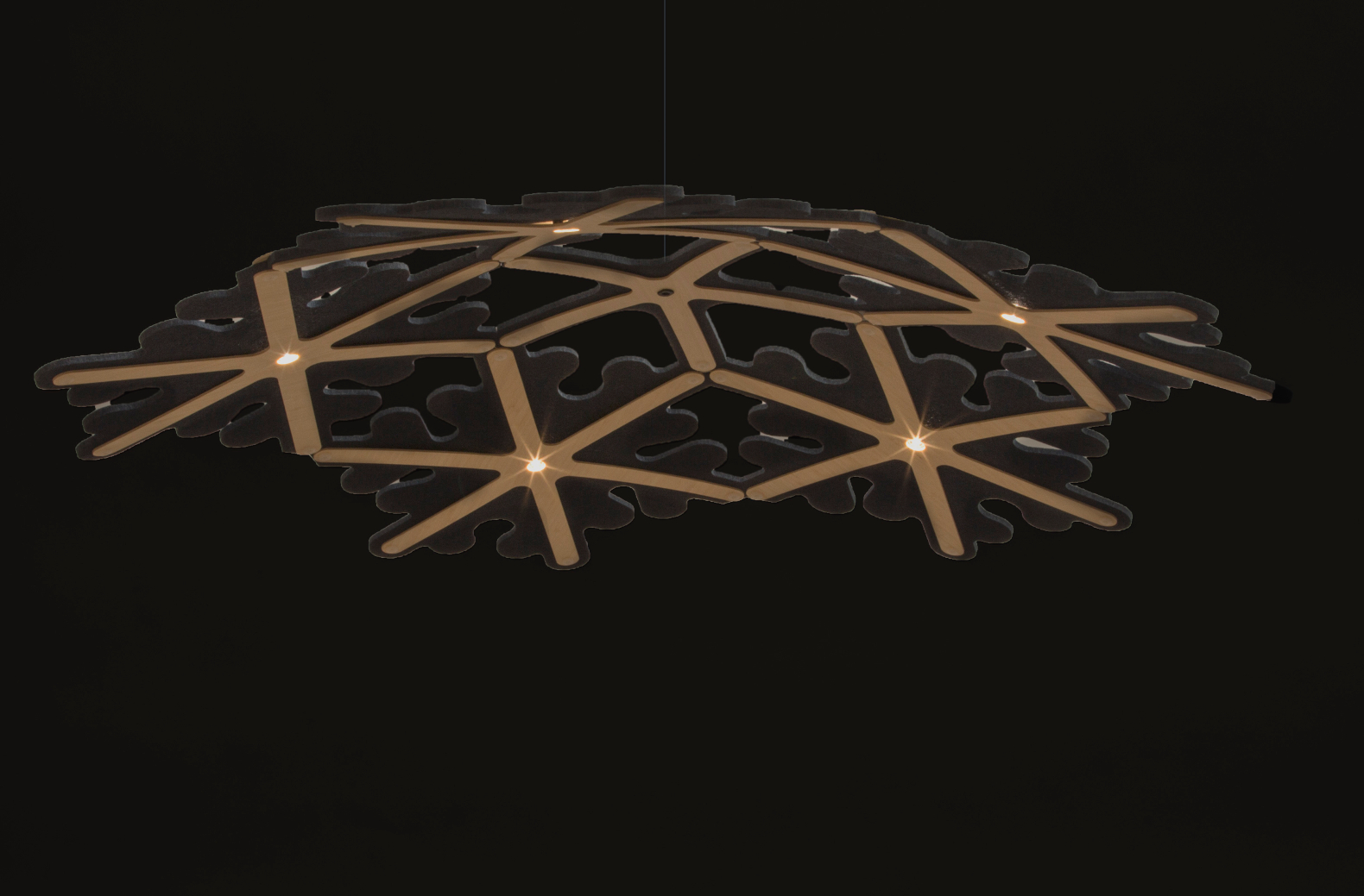 artistic lighting and designs. David Trubridge, Green Lighting, Nature Biomimicry, Navicula  Asteriola Lighting Artistic And Designs U