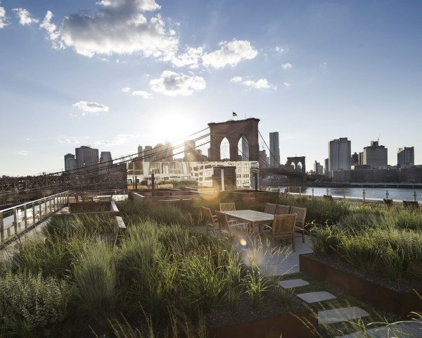 corten steel, Two Trees NY, 60 Water Street, Dock Street Rooftop Terrace, James Corner Field Operations, James Corner, meadow landscape, landscape architecture, rooftop terrace, rooftop garden, landscape architects, Leeser Architecture,