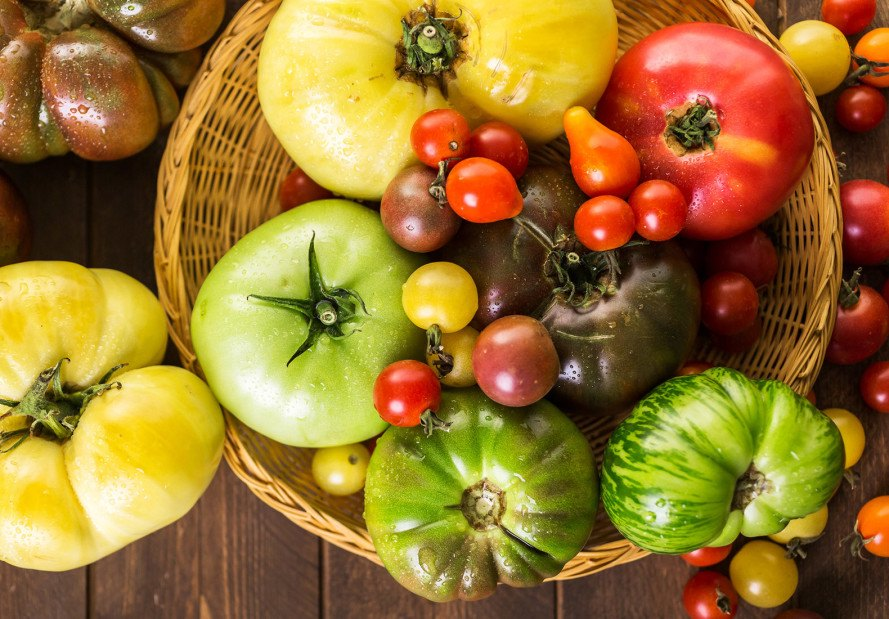 heirloom tomatoes, tomatoes, purple tomatoes, green tomatoes, yellow tomatoes, organic tomatoes, heirloom, tomatoes, heirloom vegetables