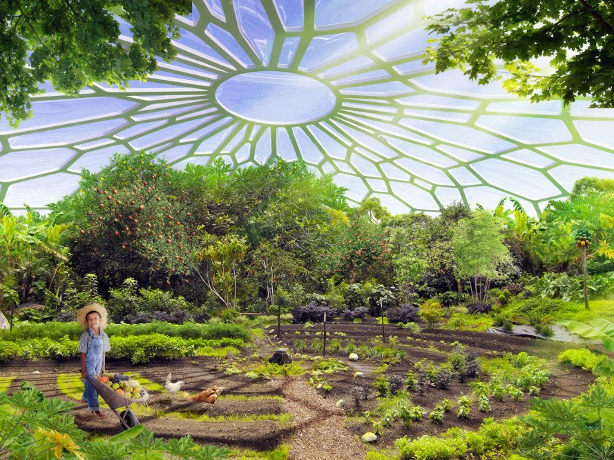 Urban farming utopia in india produces more energy than it for Self sustaining garden with fish