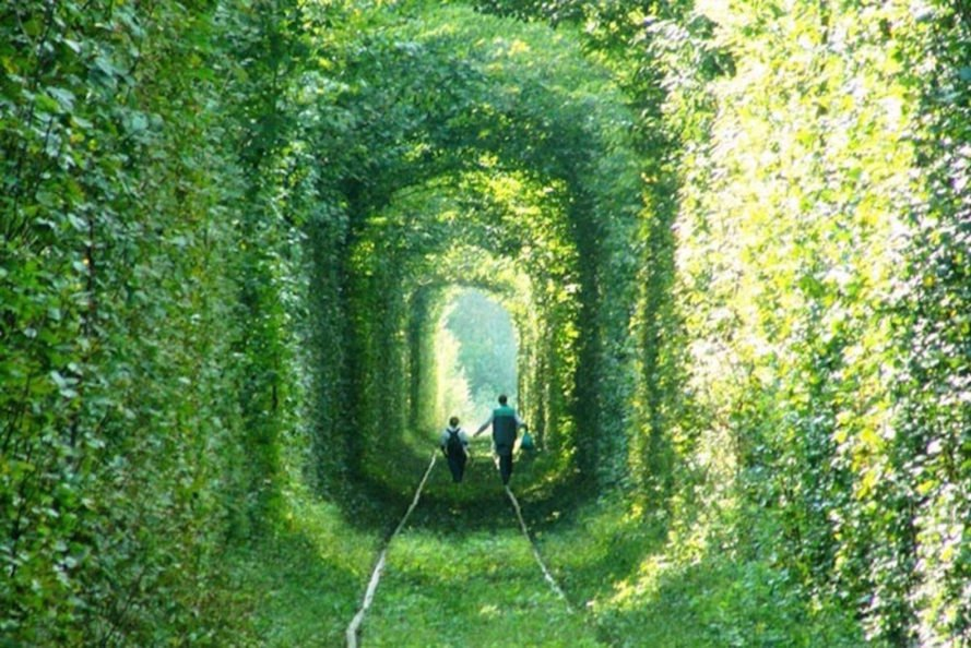 ukraine s leafy green tunnel of love is a passageway for trains  natural architecture natural arch tunnel of love green tunnel ukraine train