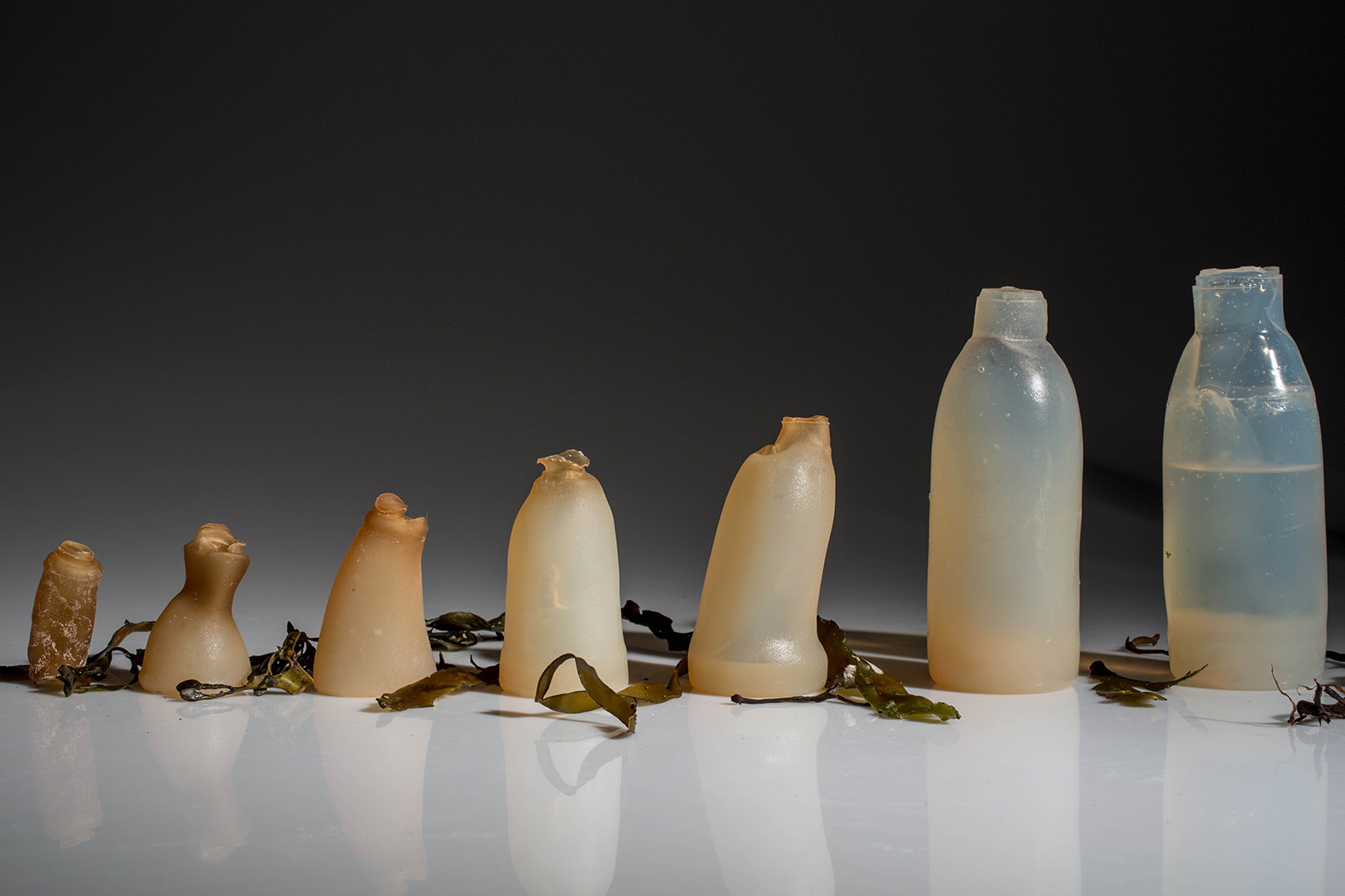 Biodegradable algae water bottles provide a green alternative to plastic