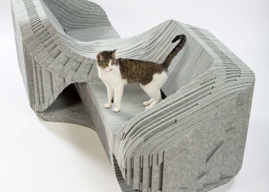 architects for animals, fixnation, abrasion tiger, DSH// architecture, standard architecture, lehrer architects, formation association, arktura, burohappold, knowhow shop, rnl, pfeiffer partners, hok, perkins and will, callisonrtkl, warren office, schmidt designs, cat shelter, feral cats, los angeles cats, cats, homeless cats