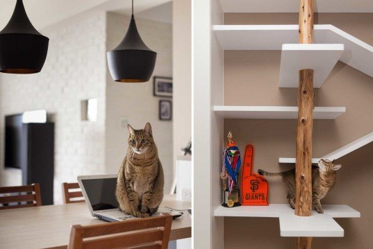 New Wall Mounted Furniture Suits People And Their Cats
