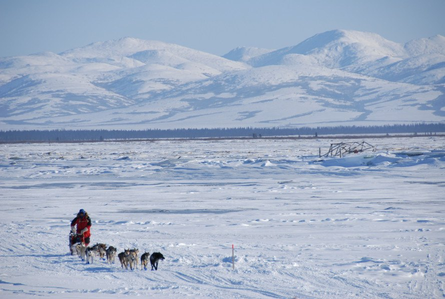 iditarod, iditarod climate change, iditarod global warming, climate change, global warming, iditarod snow, alaska snow
