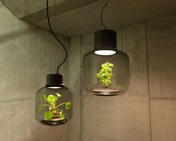 Mygdal Plantlamp, We Love Eames, design, plants, plants indoors, self-sustaining ecosystem, lighting, LED lighting, German design