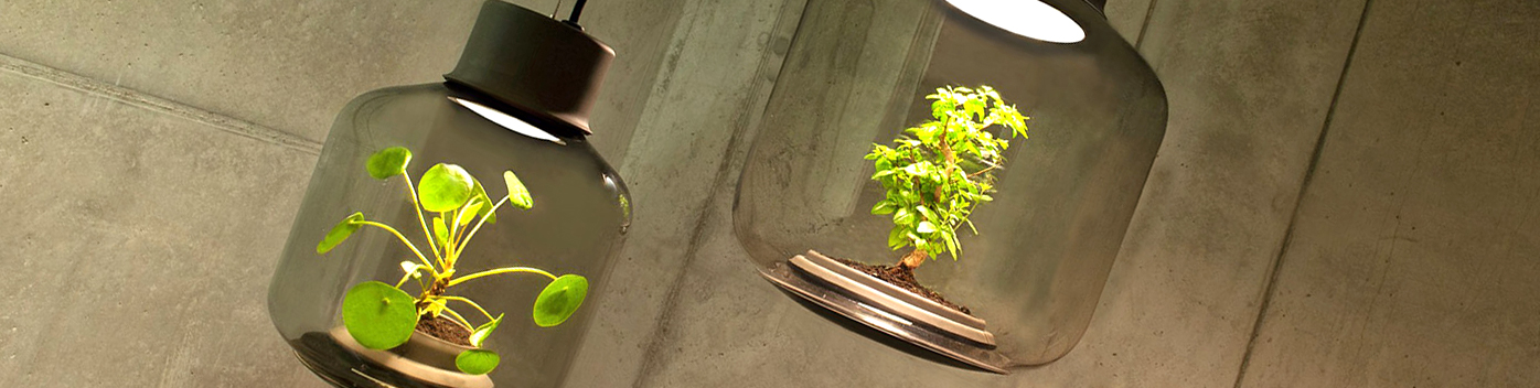 These Lamps Let You Grow Plants Anywhere   Even In Windowless Rooms |  Inhabitat   Green Design, Innovation, Architecture, Green Building