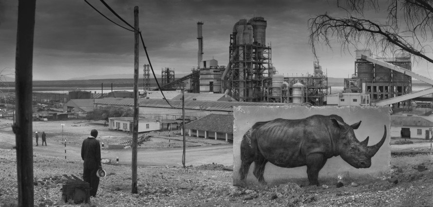 Nick Brandt, inherit the dust, african photos, life sizes portraits of animals, animal photography, urban sprawl, african wildlife, wildlife photos, art photography, East Africa wildlife, animal protection, animal refugees, photography activism