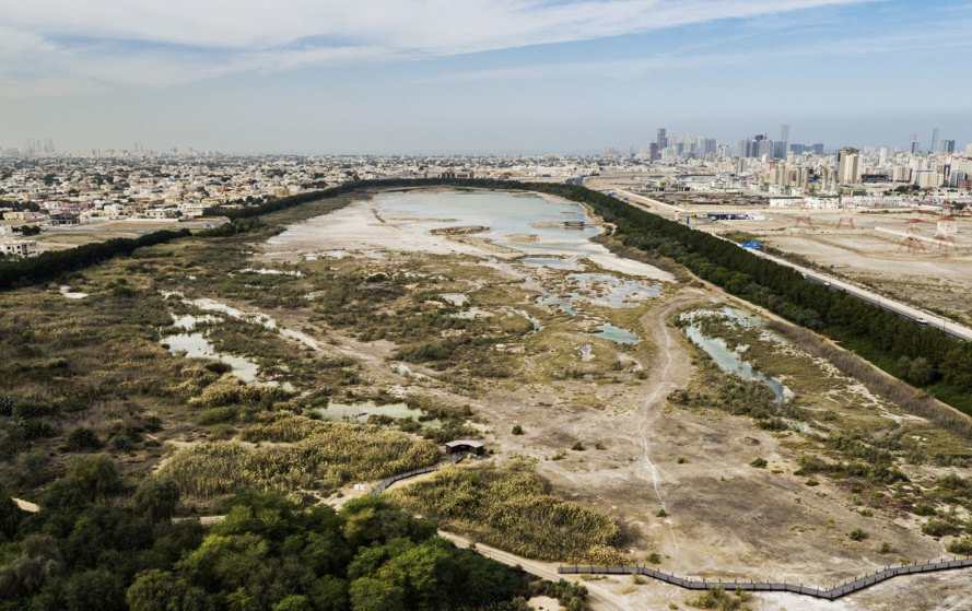 Wasit Natural Reserve, Wasit Natural Reserve Visitor Center, United Arab Emirates, natural reserve, bird habitat, bird watching, landscape architecture, visitor center, X Architects, rehabilitation