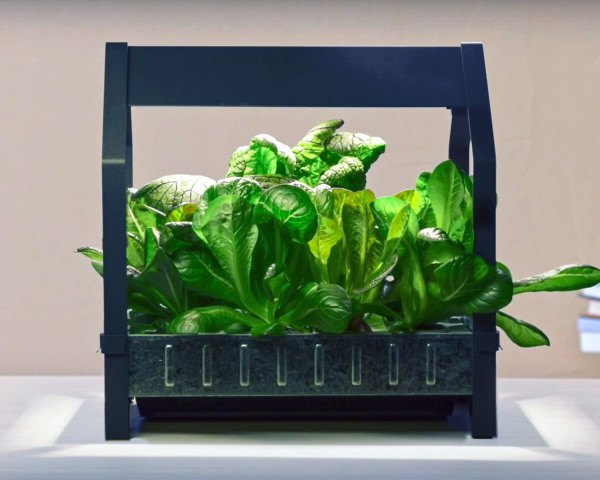 High Quality IKEA Launches Indoor Garden That Can Grow Food All Year Round | Inhabitat    Green Design, Innovation, Architecture, Green Building