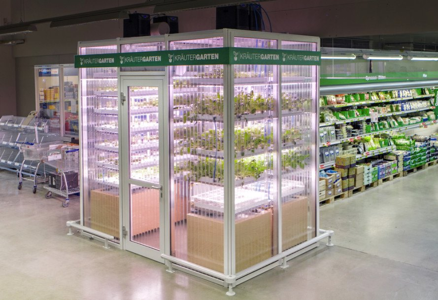infarm, berlin, germany, vertical farm, vertical garden, aquaponics, herb garden, microgreens, salad greens, growing produce in supermarket, growing produce in grocery stores, local produce
