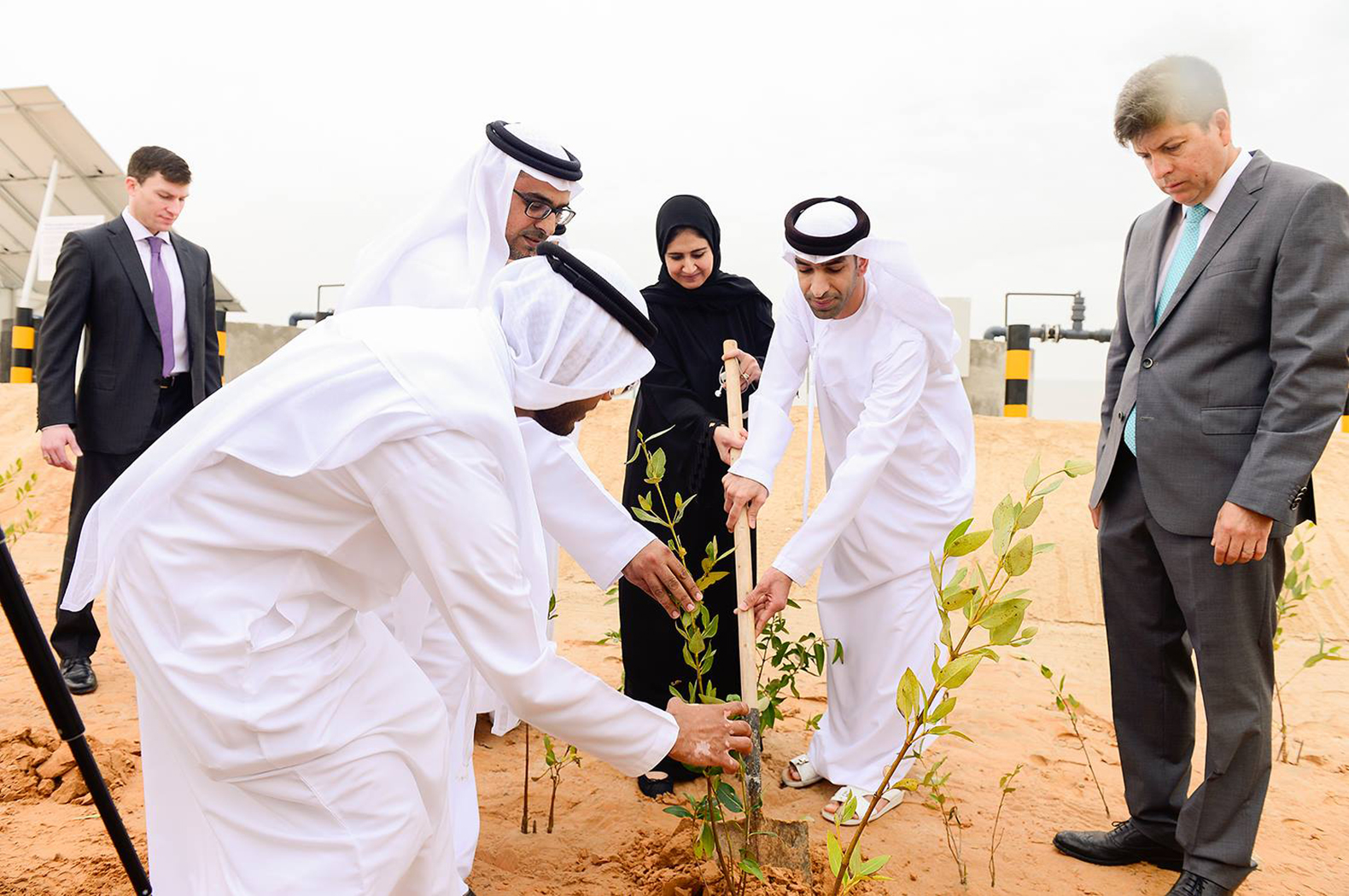 World's first farm to grow food and fuel in the desert opens in Abu Dhabi