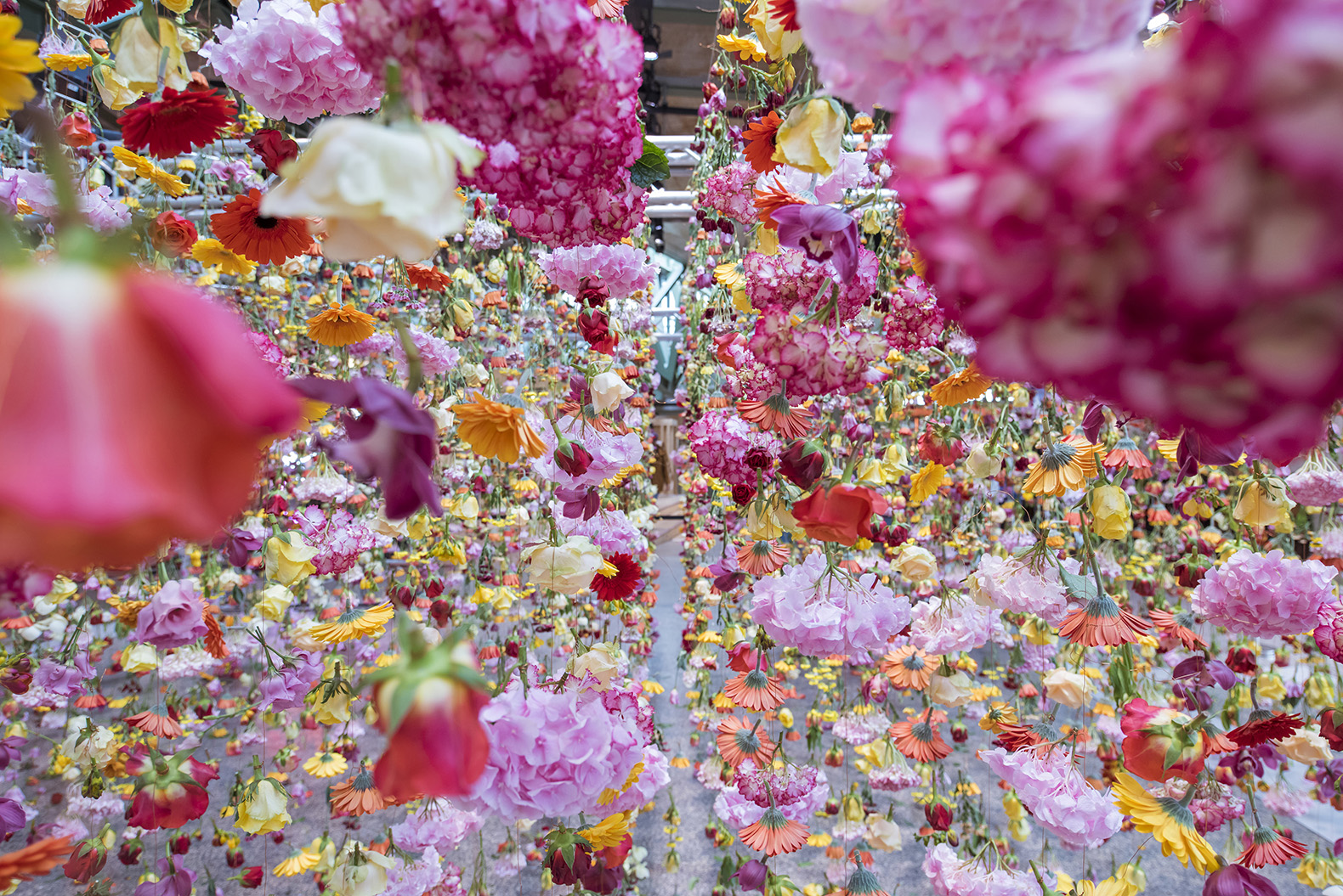 Rebecca louise laws 30000 hanging flowers greet spring in berlin garten garten by rebecca louise law rebecca louise law bikini berlin art mightylinksfo Choice Image