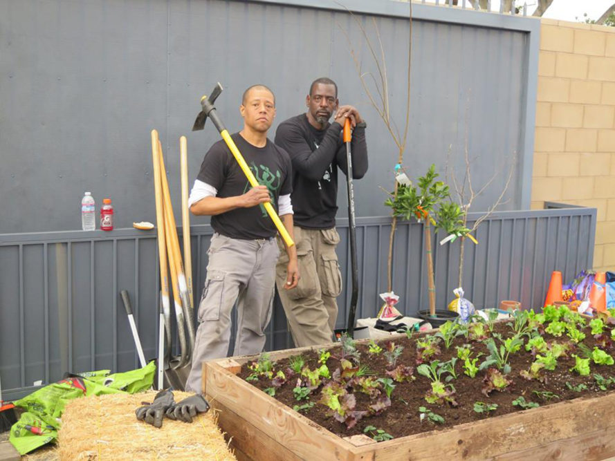 ron finley, guerrilla garden, south central, los angeles, gardening, food desert, food scarcity, healthy food, vegetable gardening, community garden