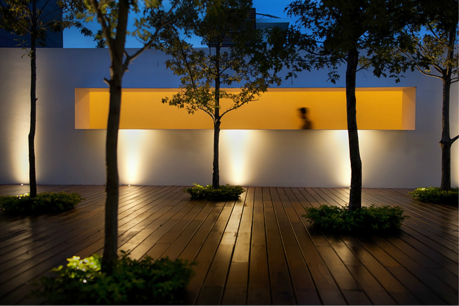 a contemporary mexican residence built around a forest of
