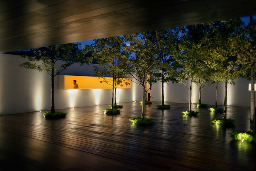 Roof Arquitectos, Casa MK, nature inspired architecture, landscape architecture, mexican design, mexican home design, forest within a home, central courtyard design, landscape courtyard, forest in a home, landscape design, traditional home design, architecture in mexico, contemporary home design,