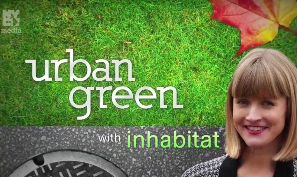 urban green openspace management based on Open space is an embracing term for a as well as urban green spaces like that meet multiple community development and environmental management.