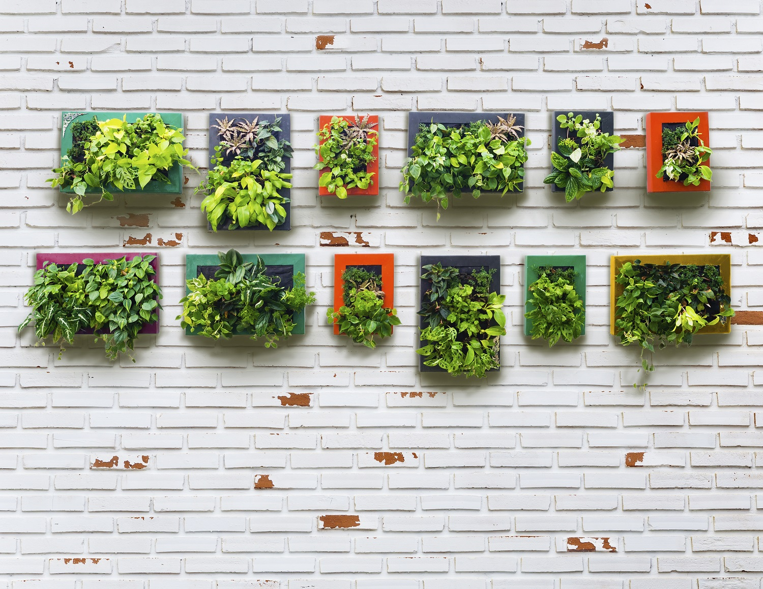 How to design the perfect vegetable garden for any space for Vertical garden design