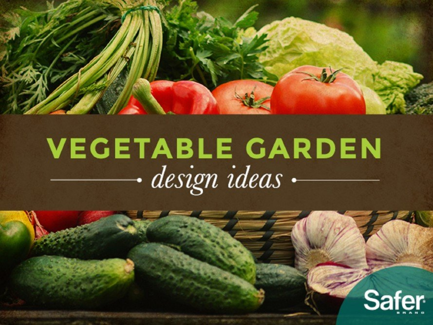 How to design the perfect vegetable garden for any space for Design your vegetable garden