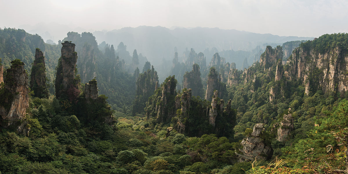 China's eco-civilization plan calls for 23% forest cover by 2020