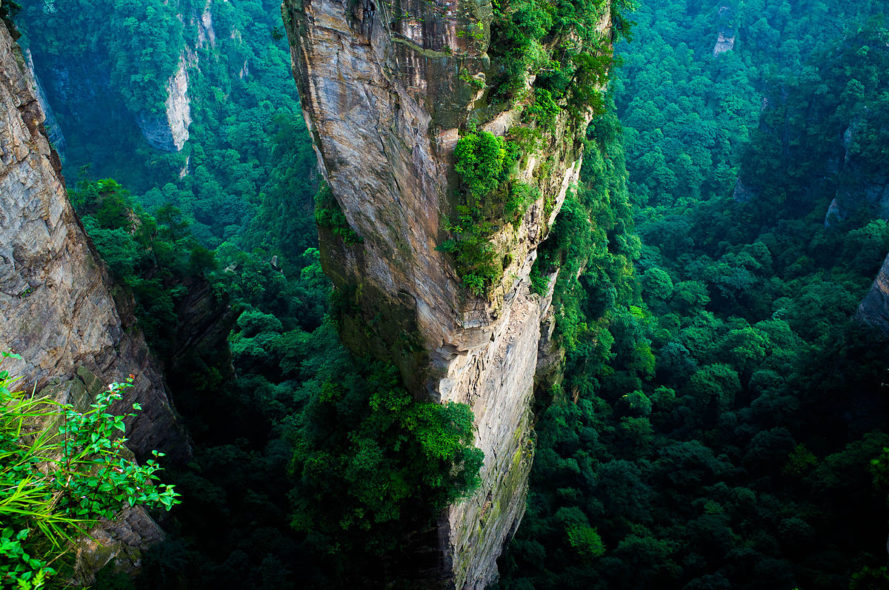 China, eco-civilization, forests, climate change